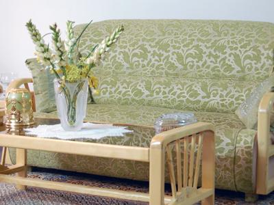 Сочетание домашних цветов и стиля интерьера