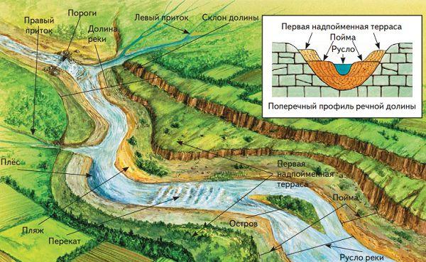 Строение долины равнинной реки