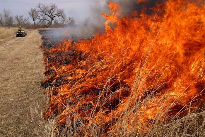 нем картинка степного пожара возможны изменения программе