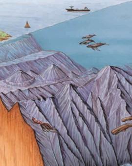 Рельеф морского дна