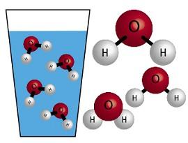 Молекула воды состоит из атома кислорода и двух атомов водорода, которые объединены ковалентной связью