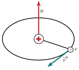 Магнитный момент атома водорода