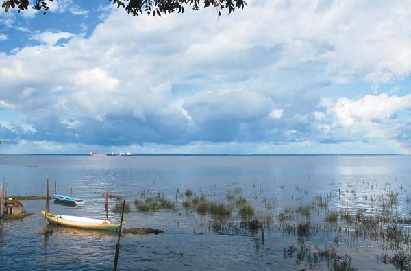 Дельта реки Амазонки