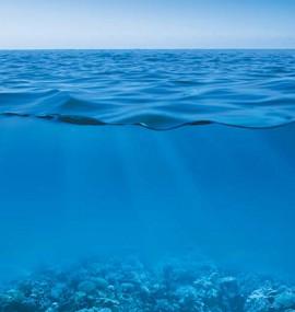 На глубине