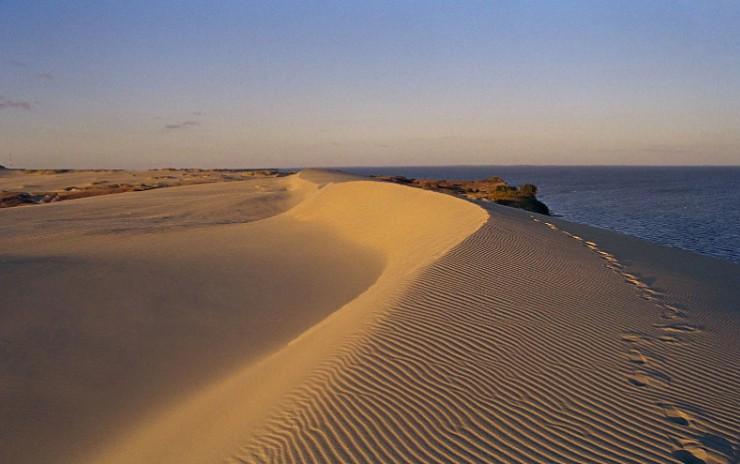 Песчаные дюны Куршской косы