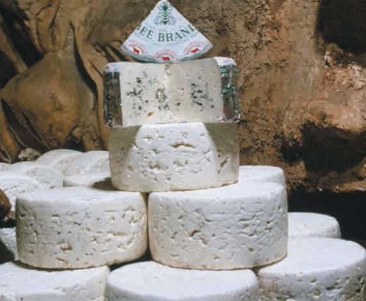 плесень на сыре