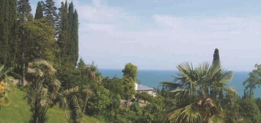 Субтропики на Черноморском побережье Грузии