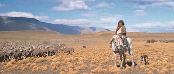 Пастухи-гаучо пасут скот на просторах пампы (Аргентина)