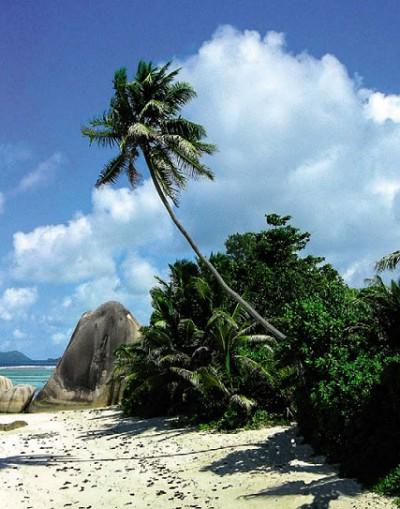 На островах Океании