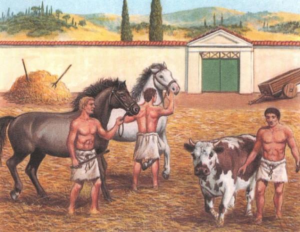 римляне топчат хлебные колосья